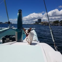 Smile N Wave Sailing Adventures - Summer 2016 - 13